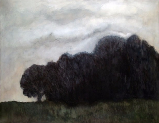 Dark Woodland