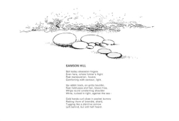 Samson Hill