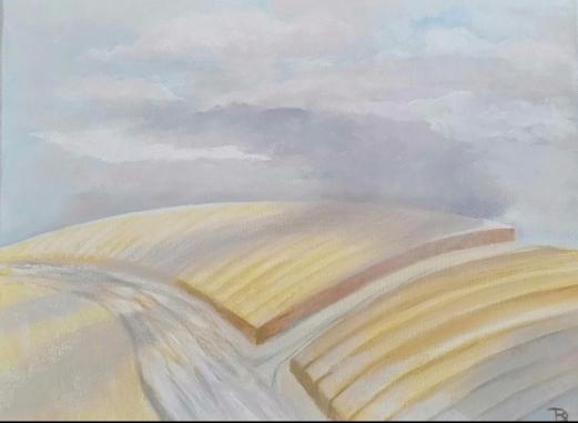 Cornfields.